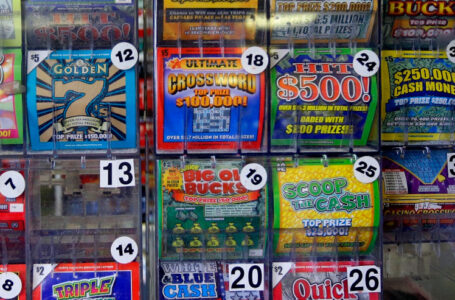 Tampa Bay Residents Win Million Dollar Lottery!